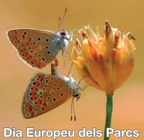 Dia_parcs