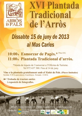 plantada_arros_pals