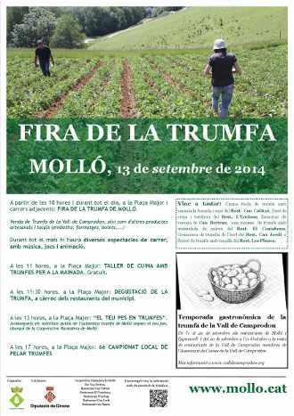 fira-trumfa-2014