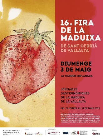 maduixa2015