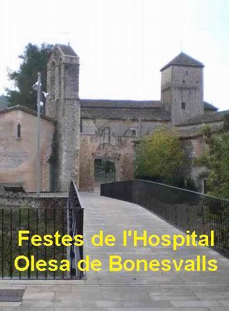 bonesvalls2