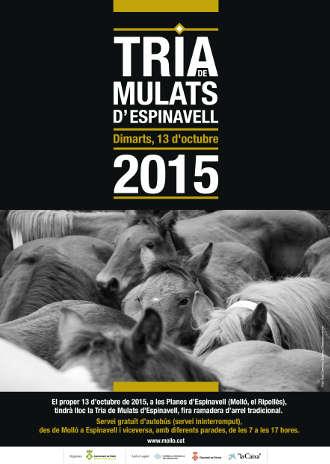 cartell_mulats