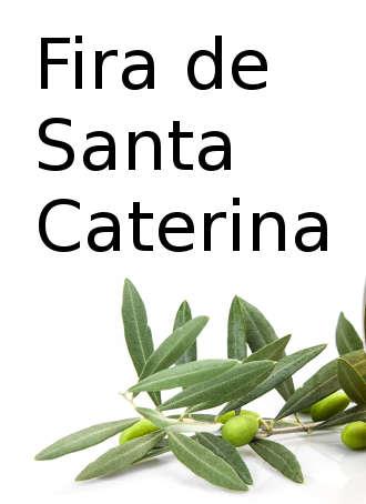 catalina_arbeca